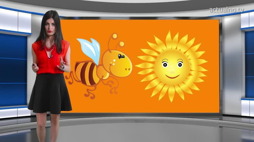 """""""Пчела"""" и """"Слънце"""" вместо оценки за учениците от втори и трети клас"""